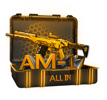 Кейс ALL IN АМ-17