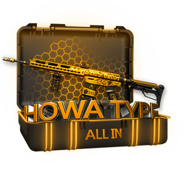 Кейс ALL IN Howa Type 89