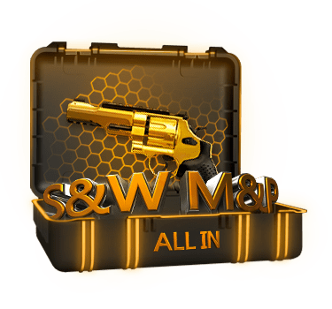 Кейс ALL IN S&W M&P R8